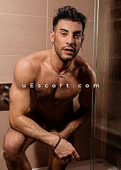 Dylanhung Male escorts London