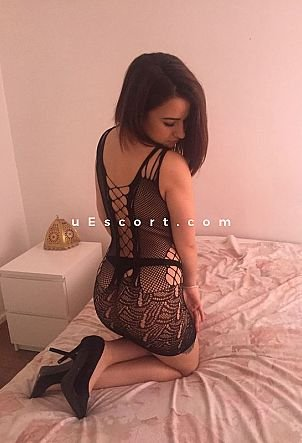 albany escort escort girls in harlow
